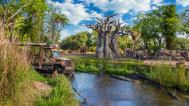 Five Mistakes to Avoid at Animal Kingdom (1/2)