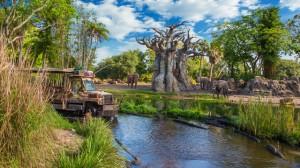 kilimanjaro-safaris-gallery00