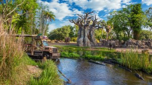 kilimanjaro-safaris-gallery00