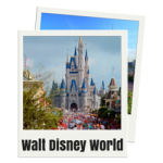 Learn everything you need to know about Walt Disney World in Orlando, Florida.