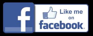 like_me_fb2-300x118